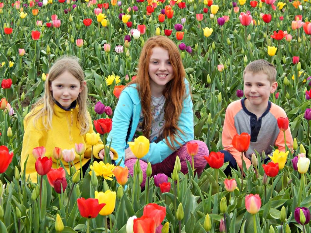 Woodburn-tulip-festival-38